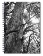 Large Tree Spiral Notebook