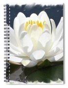 Large Water Lily With White Border Spiral Notebook