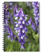 Larkspur Spiral Notebook