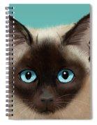 Larry Spiral Notebook