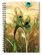 Lash Line Spiral Notebook