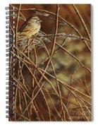 Last Light Spiral Notebook