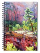 Last Light In Zion Spiral Notebook