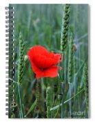 Last Poppy Spiral Notebook