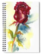 Last Rose Of Summer Spiral Notebook
