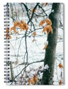 Last Snowy Leaves Spiral Notebook