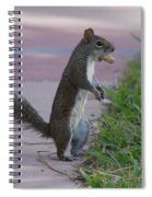 Last Squirrel Standing Spiral Notebook