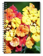 Latana And Friend Spiral Notebook