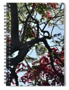 Late Afternoon Tree Silhouette With Bougainvilleas I Spiral Notebook