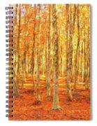 Late Autumn In Calabria Spiral Notebook
