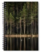 Late Loons Spiral Notebook