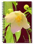 Late Spring Flower Spiral Notebook