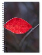 Lateral Red Leaf Spiral Notebook