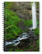 Latourell Falls Oregon Spiral Notebook
