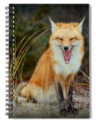 Laughing Fox Spiral Notebook