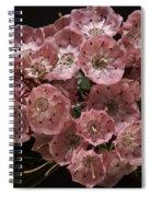 Laurel Spiral Notebook