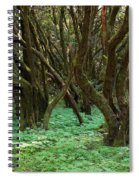 Laurisilva 1 Spiral Notebook
