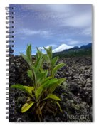 Lava And Villa Rica Volcano Spiral Notebook