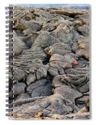 Lava Peeking At Us Spiral Notebook