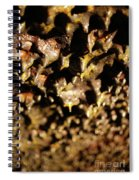 Lava Tube Cave Spiral Notebook
