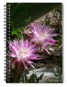 Lavendar Cactus Flowers Spiral Notebook