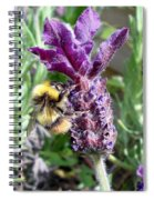 Lavender And Busy Bee. Spiral Notebook