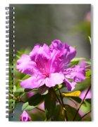 Lavender Rhododendrun Spiral Notebook