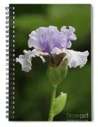 Lavender Bearded Iris #2 Spiral Notebook