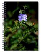 Lavender Hue Spiral Notebook