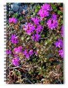 Lavender In The Wild Spiral Notebook
