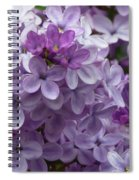 Lavender Lilacs Spiral Notebook