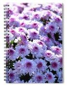 Lavender Mums Spiral Notebook