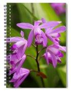 Lavender Orchid Spiral Notebook