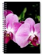 Lavender Orchids  Spiral Notebook