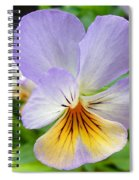 Lavender Pansy Spiral Notebook