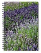 Lavender Sea Spiral Notebook
