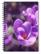 Lavender Spring Spiral Notebook
