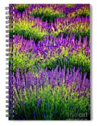 Lavenderous Harmony Spiral Notebook