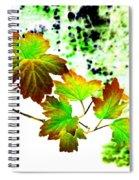 Lavish Leaves 4 Spiral Notebook