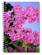 Lavish Lilacs Spiral Notebook