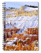 Layers Spiral Notebook