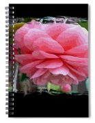 Layers Of Pink Camellia Dream Spiral Notebook
