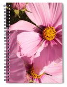 Layers Of Pink Cosmos Spiral Notebook