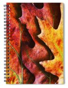 Layers Of Shades Of Autumn Spiral Notebook