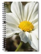 Layers Of White Cosmos Spiral Notebook