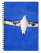Laysan Albatross Spiral Notebook