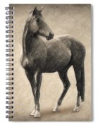 Le Cheval Spiral Notebook