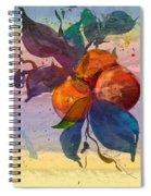 Le Temps Des Oranges Spiral Notebook