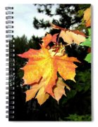 Leading The Way Into Fall Spiral Notebook