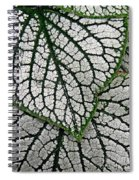 Leaf Abstract 19 Spiral Notebook